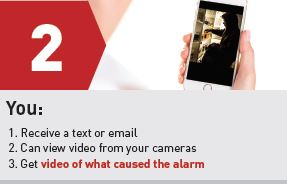 Video alarm verification 2