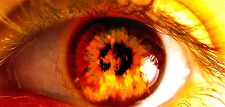 Eye on Fire Fire Alarm Monitoring